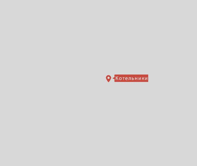 выкуп снегоходов в Котельниках и по всей Московской области